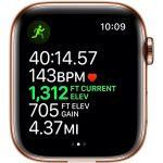 Apple Watch Series 5 GPS + Cellular 44mm Gold Stainless Steel Stone with Sport Band (MWWH2)